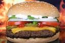 Entendendo o colesterol do organismo